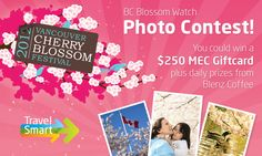 """Check out this awesome """"BC Blossom Watch Photo Contest"""" from TravelSmart! Submissions accepted until April 28th!"""