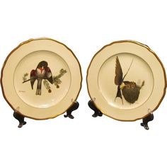 Spode Songbird Series Decorative Plates offered by the Old Stone Mansion on Ruby Lane