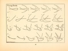 What to draw and how to draw it by EG Lutz. #bird #flying
