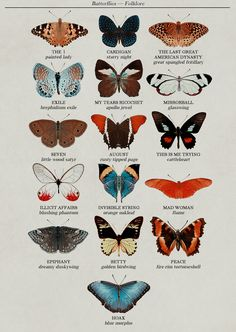 folklore track list as butterflies (based on species names)