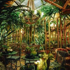 Bar Interior, Interior Garden, Restaurant Interior Design, Porch Garden, Garden Cafe, Eden Restaurant, Colonial, Brunch, Green Lawn