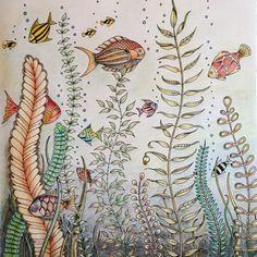 Johanna Basford | Colouring Gallery - Faber Castell Polychromos