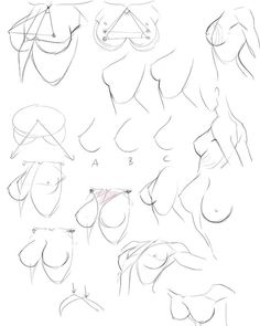 Body Reference Drawing, Drawing Reference Poses, Anatomy Reference, Drawing Poses, Body Drawing Tutorial, Manga Drawing Tutorials, Sketches Tutorial, Human Anatomy Drawing, Poses References