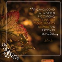 outono frases - Google Search