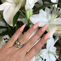 🍑🍦'PULP' IS SO PRETTY CANNOT EVEN DEAL 🍑🍦🌸🍊🍦@fgboss FLOSSIN IN #FLOSSGLOSS NEW BABY 'PULP' OPAQUE FLESHY PEACH CREME 🍑🍊SHOP LINK IN BIO! 🍑✨☀️🍑🍊