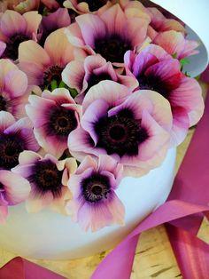 fleurs trémolo
