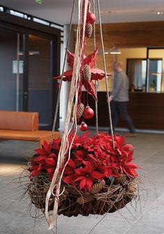Stars for Europe: schöne Poinsettien-Zeit – Door hanger Diy Christmas Lights, Christmas Love, Christmas Colors, Christmas Wreaths, Dyi Decorations, Handmade Christmas Decorations, Holiday Decor, Poinsettia, Advent Candles