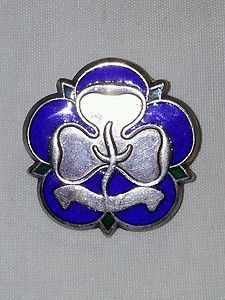 Girl guides Good service badge