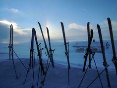 Alan Naylor landscape painting and adventure photography Winter Light, Adventure Photography, Arctic, Wind Turbine, Landscape Paintings, Adventure Travel, Remote, World, Landscape