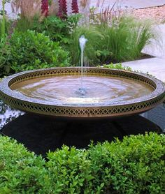 Mimeo water bowl in a pond by David Harber