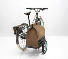 Bicycle with dog carrier