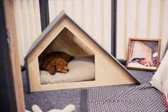 The Most Beautiful Dog Houses Come From This South Korean Company | Co.Design | business + design