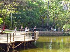 Bosque dos Buritis - Goiânia