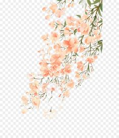Watercolor Flowers, Watercolor Paintings, Diamante Rosa Steven Universe, Presets Photoshop, Flower Png Images, Watercolor Stickers, Overlays Picsart, Tea Art, Aesthetic Stickers