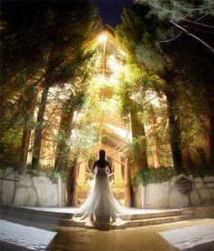 http://socalweddingconsultant.com Southern California Wedding Planner Gorgeous lighting Wayfarer's Chapel Wedding Palos Verdes
