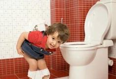 Potty training clean up