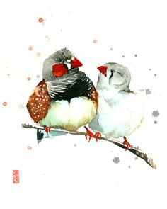 Fine art in watercolor, acrylic, oil, and textiles. Watercolor Paper Texture, Watercolor Bird, Watercolor Animals, Watercolor Paintings, Wildlife Paintings, Animal Paintings, Zebra Finch, Original Art, Original Paintings