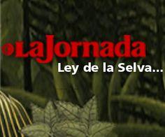 Vacía el gobierno de Oaxaca $800 mil de cuenta bancaria del Iago — La Jornada