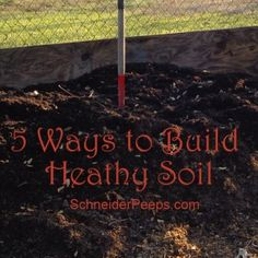 ~5 ways to build healthy soil~