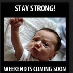 Baby Memes - Just shut up! in Baby Memes - Memes Best Funny Jokes, Best Funny Videos and Best Funny Memes in the web. The All in One funny jokes, videos and picture packages in the website for the first time. Friday Quotes Humor, Memes Humor, Humor Quotes, Food Quotes, Monday Memes, It's Monday, Wednesday Memes, Drunk Humor, Baby Memes