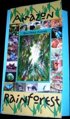 Rain Forest - Animals of the Amazon. Unit study and minibooks.