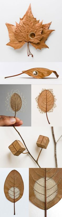 Crocheted Leaf Sculptures by Susanna Bauer, http://www.susannabauer.com/