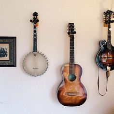 String instruments hung on wall