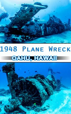 Scuba diving a World War II plane wreck in Oahu, Hawaii. There is great diving just off the coast of Honolulu including this amazing plane wreck!