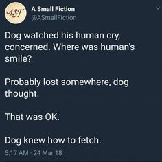 Dogs are wholesome