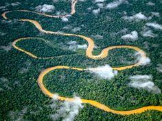 Manu National Park, Peru --- Meandering River in Manu National Park --- Image by © Frans Lanting/Corbis © Corbis. All Rights Reserved.