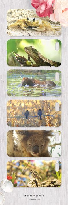 Cute Animal iPhone 7 Covers #cases #animals #photography #designsbyblue Iphone 7 Covers, Cute Animals, Teddy Bear, Cases, Community, Photography, Design, Pretty Animals, Photograph