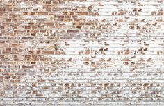 Mural de Parede Background of old vintage dirty brick wall with peeling plaster Brick Wallpaper Living Room, Brick Wallpaper Mural, White Brick Wallpaper, Textured Wallpaper, Wallpaper Ideas, Painted Wallpaper, Wallpaper Gallery, Wallpaper Wallpapers, Painted Brick Walls