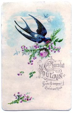 Vintage Clip Art - Pretty Swallow with Roses - The Graphics Fairy