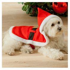 Habit de Noël pour chien - CHIEN, CHAT ET COMPAGNIE TAILLE UNIQUE LONG DE 43 CM 10e