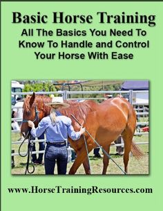 Basic Horse Training - All You Need To Know To Safely Handle And Control Your Horse