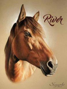 34 Meilleures Images Du Tableau Cheval Bai Beautiful Horses