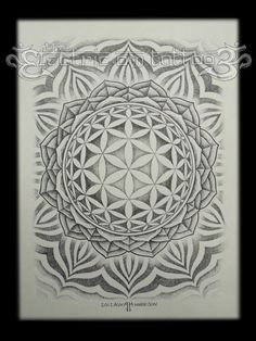 flower_of_life_mandala_2012_by_ash_harrison-d4o70s5.jpg 774×1,032 pixels -> Great tools for light-workers.. Flower of Life T-Shirts, V-necks, Sweaters, Hoodies & More ONLY 13$ EACH! LIMITED TIME CLICK ON THE PIC