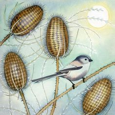 'Long-Tailed Tit' By Kate Green. Blank Art cards By Green Pebble.