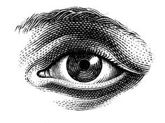 Pen and ink illustrations for various commissions. Gravure Illustration, Eye Illustration, Engraving Illustration, Ink Illustrations, Art Drawings Sketches, Tattoos Lindas, Black And White Illustration, Black And White Drawing, Doodle Tattoo