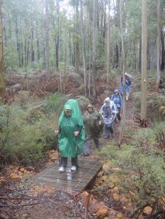 Our Three Day Walk on The #Bibbulmun #Track Aug 2013 - this pic is near Collie