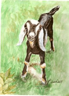 Goat Portraits!    Miss Evey as a baby.    Prints of this watercolor painting by Arin Quintel of SpiritArts Studio in Lebanon, Maine will be available exclusively to our kickstarter project backers!    http://www.kickstarter.com/projects/flyinggoatfarm/goat-cheese-for-southern-maine-new-hampshire-and-b