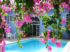 A view behind a veil of fushia, The Blue House in Ocho Rios, Jamaica. Come back to Jamaica!
