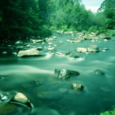 Taken with a Diana F+. The water looks like liquid metal.