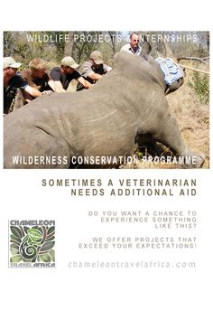 Experience a unique work & wildlife viewing experience in the heart of the South African bush, while being an active member of the reserve & wildlife management team. Veterinarian Career, Provinces Of South Africa, Private Games, Game Reserve, Time Management, Conservation, Wilderness, Wildlife, Students