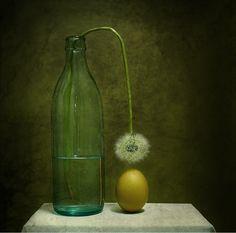 benita-loca:    WintermoonPhotography
