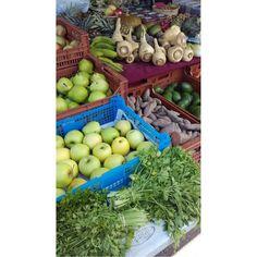 Hoy hemos ido a conocer el mercado ecológico de plaza de los patines #Palma (martes y sábados). No os lo perdáis! #eco #ecopalma #inpalma #mallorca #mercado #market #bio #foodporn