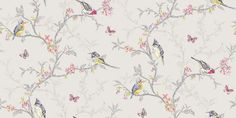Phoebe Grey (98081) - Albany Wallpapers - An all over, trailing wallpaper design featuring trailing tree branches with vibrant coloured birds, flowers and butterflies. Shown here in various colours on a soft pale grey background. Other colourways are available. Please request a sample for a true colour match.