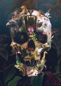 Art Skulls – Les crânes créatifs d'Ali Gulec