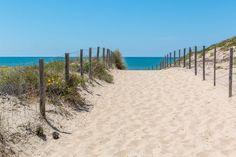 Découvrez la plage des Dunes sur la presqu'ile du Cap Ferret : localisation, photos, activités et loisirs, commerces, hébergements à proximité...
