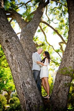 Enagement photo shoot tree - Love the idea of being in the tree!